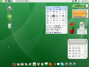 gOS desktop